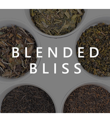 Blended Bliss Sampler Set