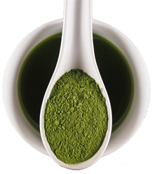 Matcha Green Tea - Organic Ceremonial Grade